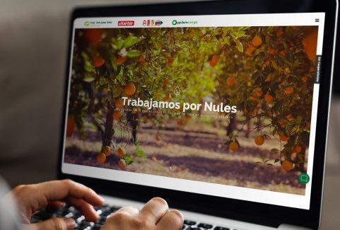 Web | Cooperativa San Josep Nules
